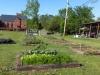 May 07 2017 Church Gardens 01