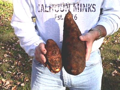 11-24-02sweetpotatoes-07