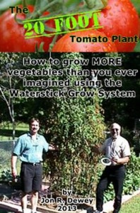 The_20_FOOT_Tomato_Plant_Large